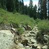 Castle Lake Trail