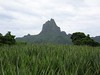926 Mount Mouaroa, the Bali Hai mountain from the movie South Pacific