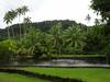 886 The Jardin Botanique on Tahiti