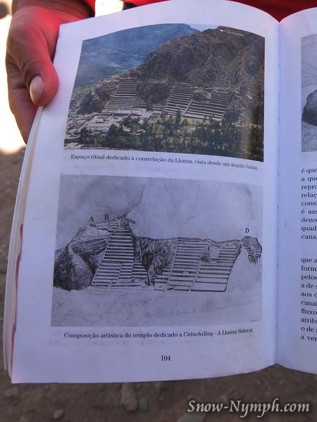 Terraces forming image of llama