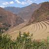 Pisaq Inca Site and orange flowers