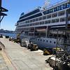Oceana Cruises