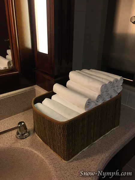 Cloth napkins in the ladies room