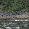 Juneau 09