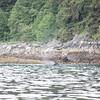 Juneau 05