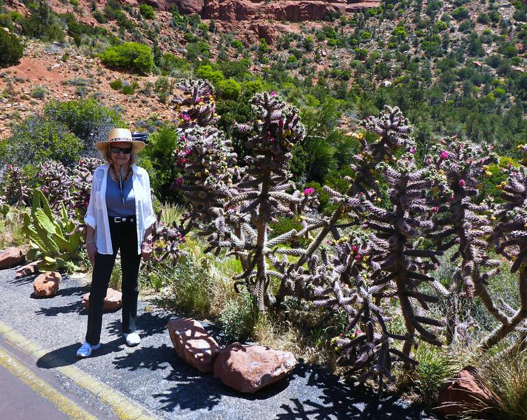 JoAnn by plants along the road