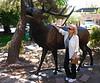 JoAnn with a Friendly Elk