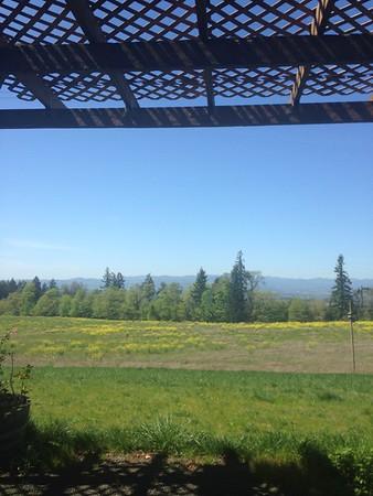 2016 Willamette valley wine trip (April)