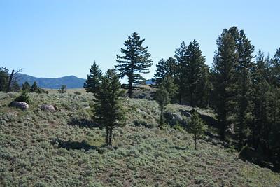 2016-Yellowstone NP