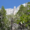 """I believe this formation is called """"Lost Arrow"""". It's on the same formation as Upper Yosemite Falls."""