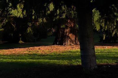Schlosspark Bad Kreuznach