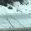 Jan 27, 2017  Took this pic of a weasel (?) running across a frozen pond while Scott was driving.  Looked pretty big!