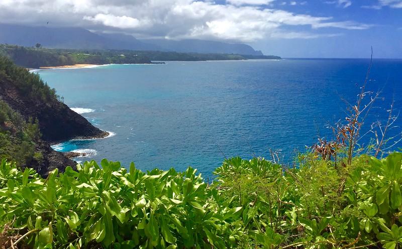 005  Kilauea coast, N.Kauai