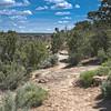 Canyon Rim Near Overlook