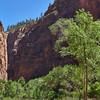 Close Up of Canyon Walls
