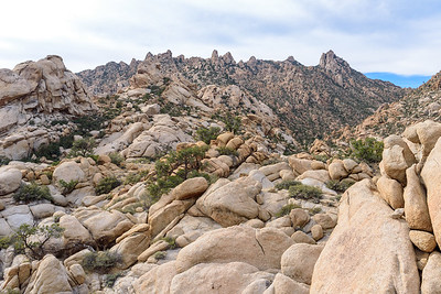 Caruthers Canyon, Mojave National Preserve