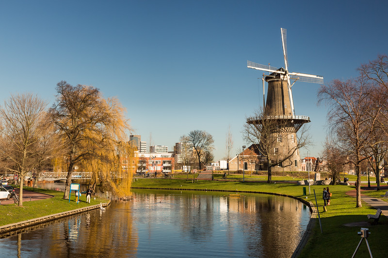 The windmill is in a nice park.