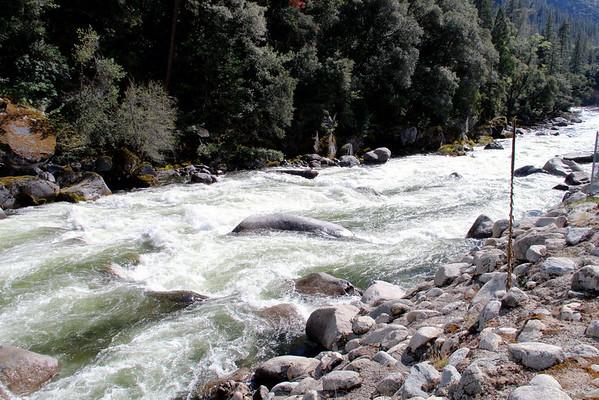 4-17-2013 Yosemite Dick Favs