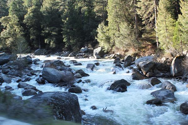 4-17-2013 Yosemite Dodie Favs
