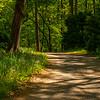 27  G Garvan Woodland Gardens Trail