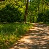 26  G Garvan Woodland Gardens Trail