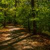 23  G Garvan Woodland Gardens Trail