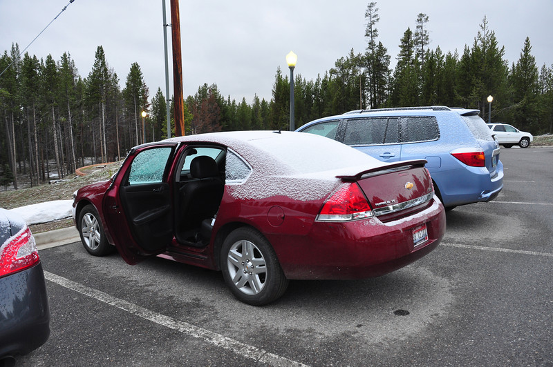June 17th and it snowed in Yellowstone!