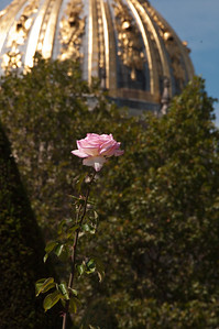 The next 15 images were taken at the Rodin Museum