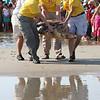 Rehabilitated loggerhead is released back into the sea at Isle of Palms