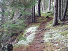 path on Bartlett
