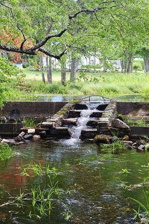 Delightful Waterfall at Brookside Cemetery