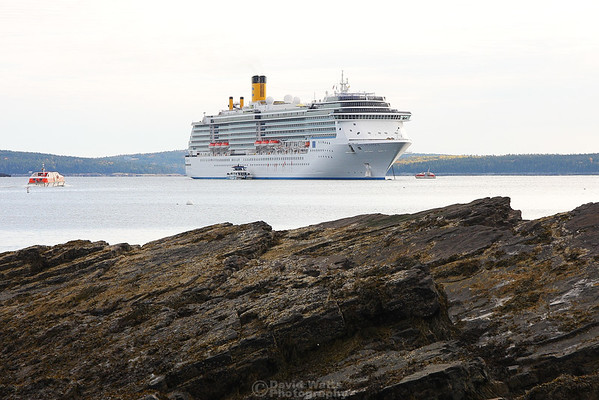Cruise Ship - Bar Harbor, Maine
