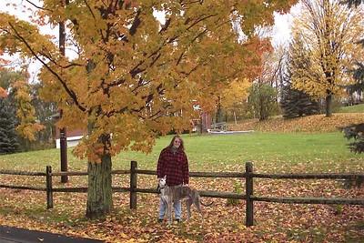 Adirondacks October 2005