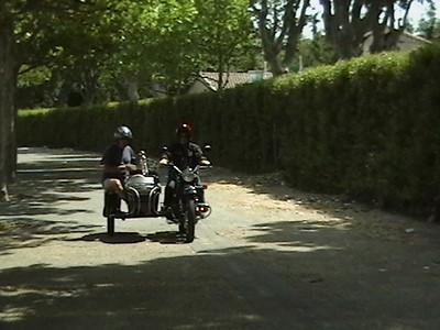 provencepalmcordr 014
