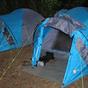 My tent on the left and Tim's on the right, our home in Nsutu forest for four nights.