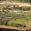 Malagassy rice paddies.