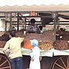 Date and nut seller at Souq in Marrakech.