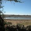 The waterhole, Okaukuejo Rest Camp, Etosha NP, Namibia