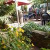 Breakfast in the garden at Tradouw Guest House B&B in  Barrydale.