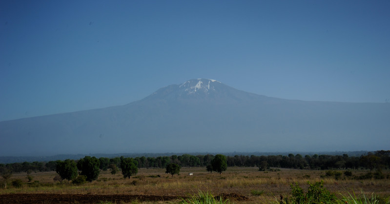 Mount Kilimanjaro from the Martin's back yard.