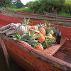 Pineapples loaded in the boat for trade.