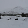 Thursday was a snowy, windy day.  This is near Flat-Top Mountain in Anchorage.