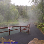 The Hot springs deck at Liard Hot Springs