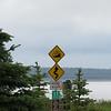 Day 12 Anchorage to Denali (14)