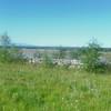 Day 17 Harding Lake to Chicken (9)