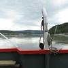 Day 18 - Chicken to Dawson City (71)