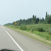 Day 22 Fort Nelson to Dawson Creek (2)