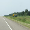 Day 22 Fort Nelson to Dawson Creek (3)