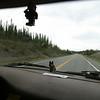 Day 6 Glennallen to Portage (12)