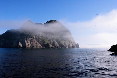 Taken during Kenai Fjords boat trip